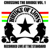 Bumpin Uglies Live at The Standard 1-20-13 White Boy Reggae
