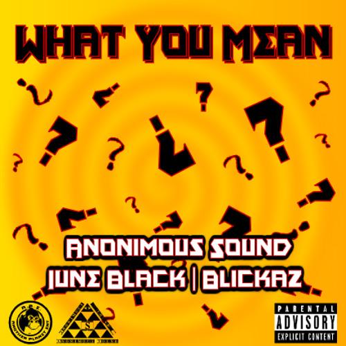 What You Mean - Anonimous Sound, June Black, Blickaz