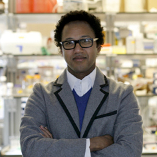 Andre Fenton: The twisting road from basic brain research to helping malaria patients