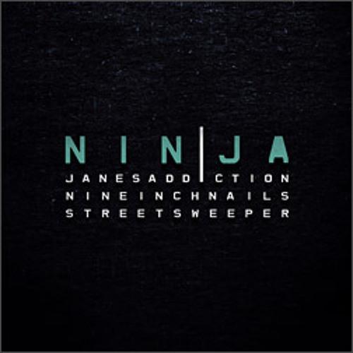 Nine Inch Nails - I'm Afraid of Americans (Live, 2009)