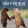Free Download Gray Or Blue Jaymay Mp3
