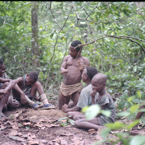 Ngbanda playing the ngbindi earth bow (Central African Republic) [1997 21 2 132 B 11]