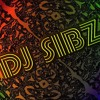 DJ Sibz feat. Possessed Soul - My Irony (Original Mix) Incl. Dub Mix
