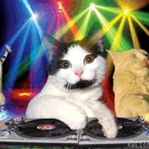 Meow Mixx