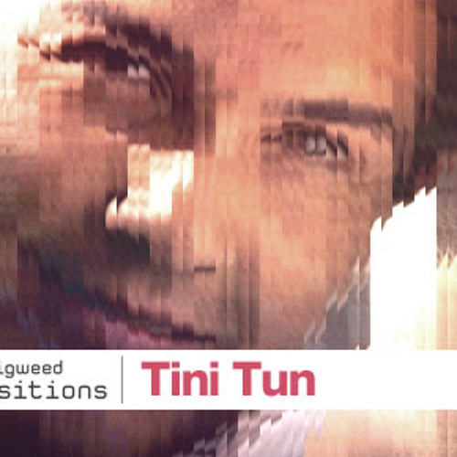 Tini Tun@Transitions 443 by John Digweed Feb 22nd, 2013.