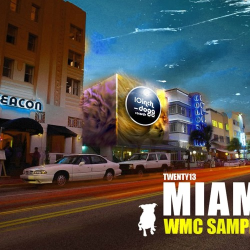 audiosoul - miami heat  (10inch-dogg records)