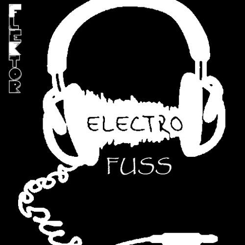Electro Fuss Dj Flektor