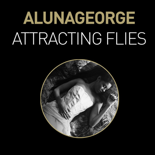 Attracting Flies (Shift K3Y Remix)