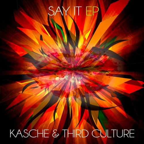 Kasche & Third Culture - Say It (Extended Mix) Preview