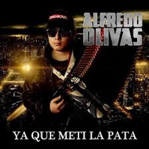 Alfredito Olivas - Ya Que Meti La Pata 2013