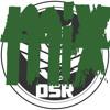 DSR Mixes - ♛ Best Dubstep Of Feb 13 ♛ - 19min Free mix!