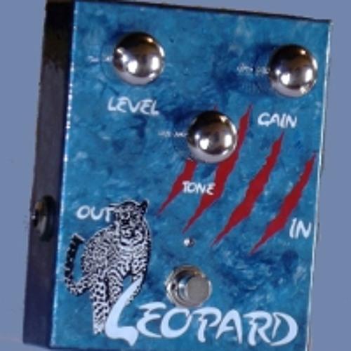 Leopard prova