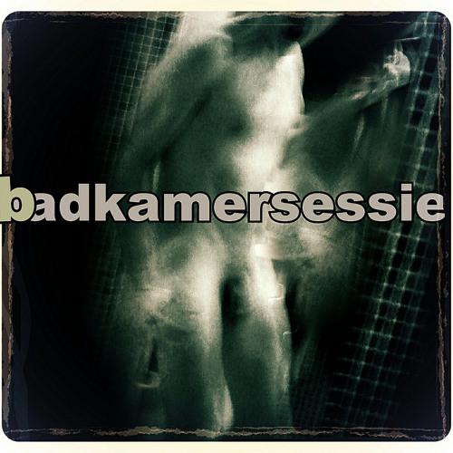 Badkamersessie 2013