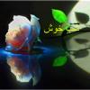 Shab Khoosh (Good Night)(2) Kataneh Lo's Videos