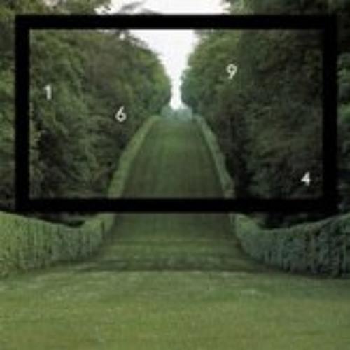 Codicil (Roman Fluegel Remix)- The Draughtsman (snippet)