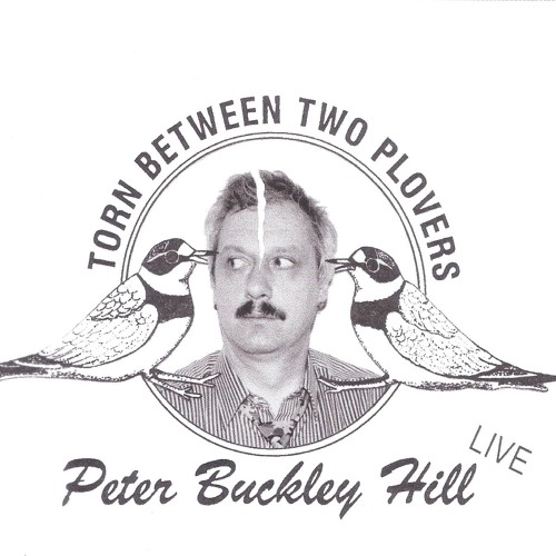 Peter Buckley Hill - Torn Between Two Plovers