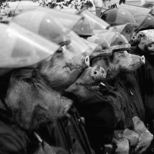 (fr33 fr3aX) Krizus Brigade - Paniekzaaiers