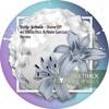 Robin Schulz - Stone (Delia Ros Remix) - Preview