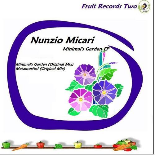 Minimal's garden - Nunzio Micari (original mix)