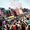 Tomorrowland Songs (2012) - Dj MoW
