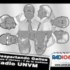20130306. Cabo Suboficial Jorge Boaglio. Bomberos Voluntarios de Villa Nueva. 6m 48s