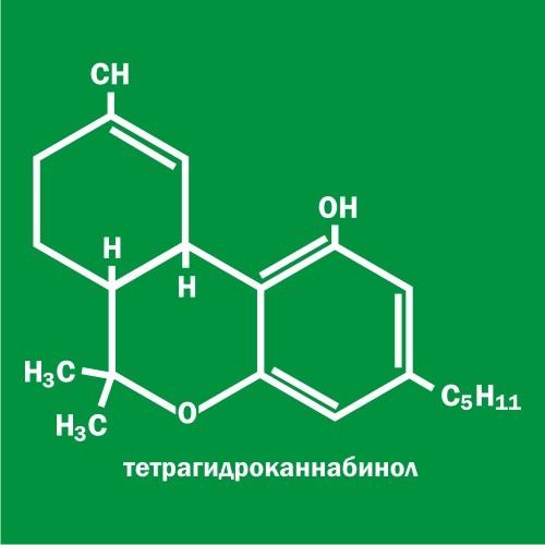 DiMVN!X - THC [FREE]