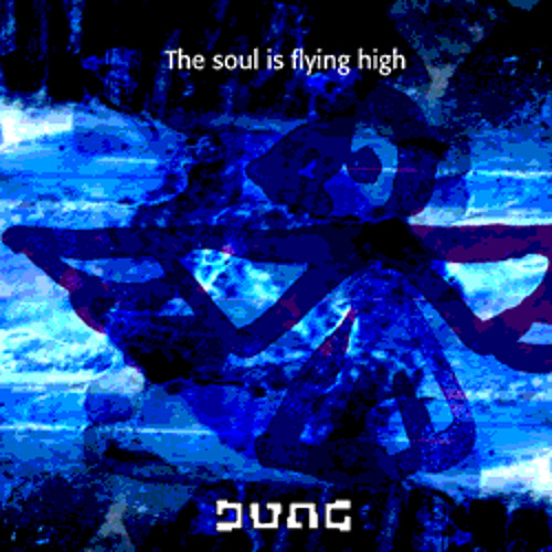 The Soul is Flying High