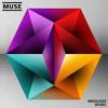 Muse - undisclosed desires