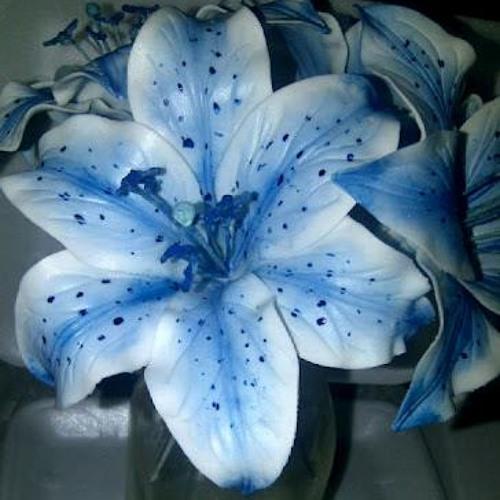 Tu crinul meu albastru-versuri Popa Ines Vanda voce Ady Moldovan