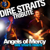 Sultans Of Swing (cover by Angels of Mercy Tribute Band)
