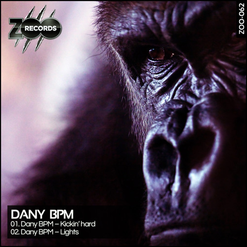 Dany BPM - Kickin' Hard (Preview)