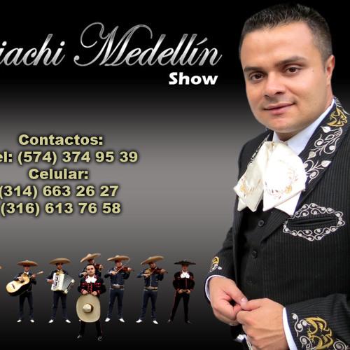 Mi amigo el tordillo - Mariachi Medellin