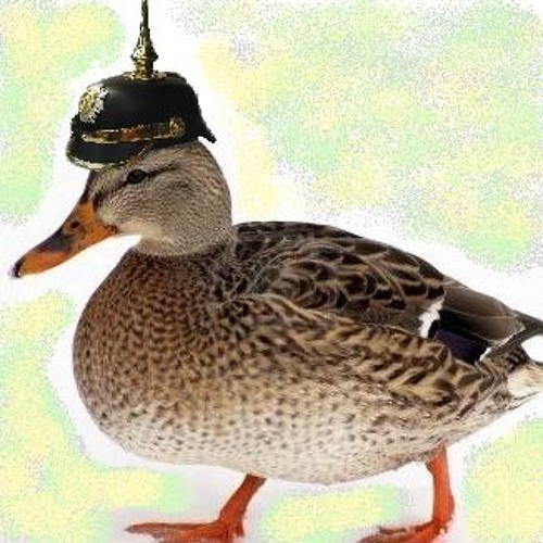 Prussian Military Duck