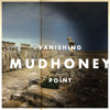 Mudhoney - The Only Son Of The Widow Of Nain