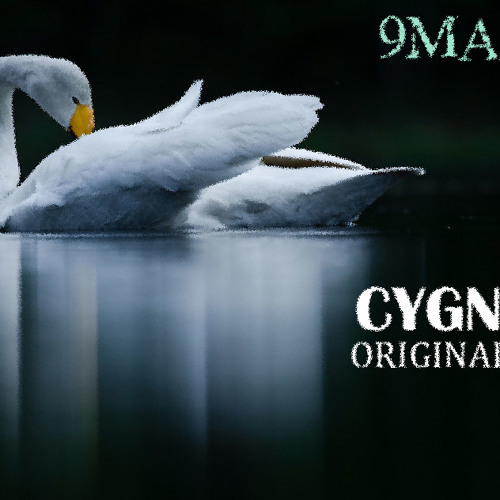 9MARCH - CYGNUS ( ORIGINAL MIX ) ( Breakdown Part )