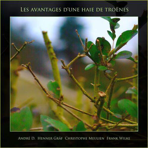 """""""Gefangen im Gestrüpp"""" from LP """"Les avantages d'une haie de troènes"""""""