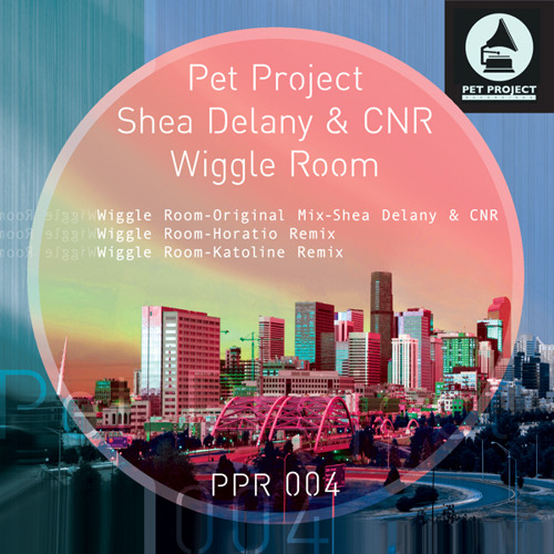 Shea Delany & CNR - Wiggle Room (Haimanale Remix)