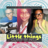 One Direction - Little Things Cover by AEL3