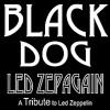 Led Zeppelin - Black Dog By P@blo