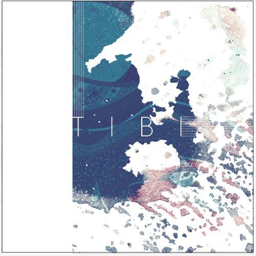 TIBI- The Shift