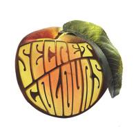 Secret Colours - Blackbird (Only One)