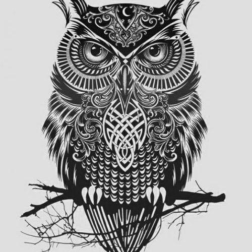 Dzy the Owl - Owler (Nurd Remix)