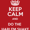 Baauer vs Pitbull ft Usher - DJs Got Same Harlem Shake