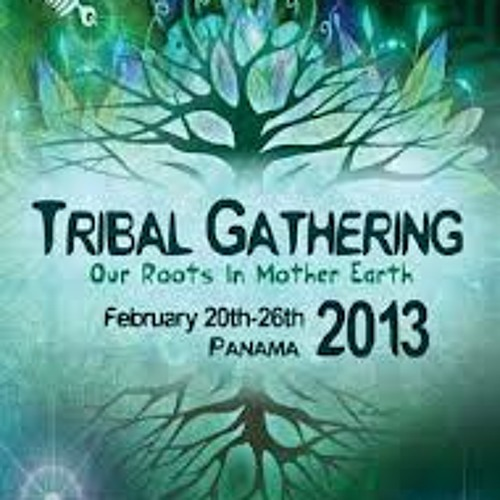 Geopradise Tribal Gathering 2013 live mix part 2