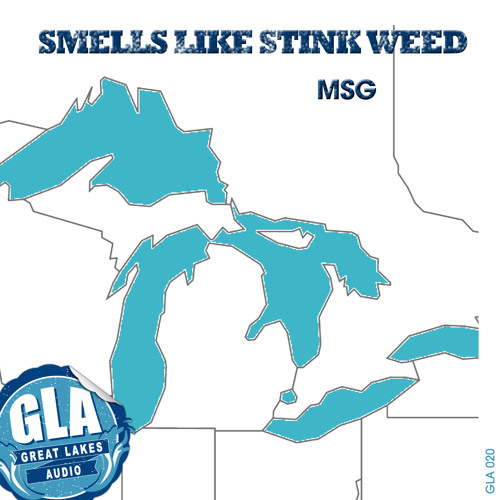 MSG - Smells Like Stink Weed (Dave Mayer This N That Mix)