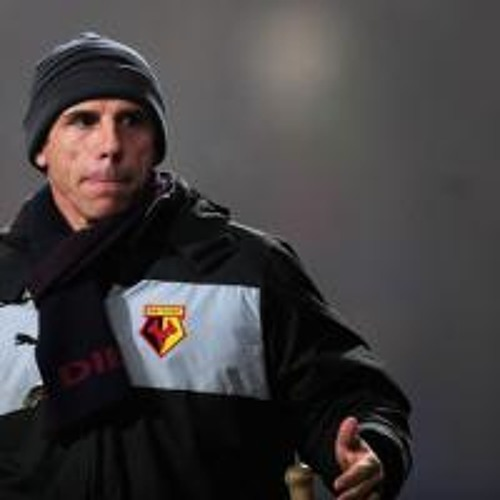 Zola: Watford should have had two penalties