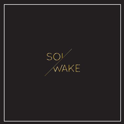 Solwake - Higher(free mp3 download)