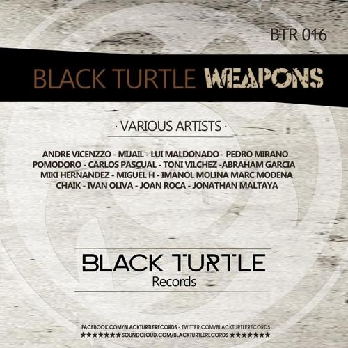 Pedro Mirano - Maturing (Original Mix) [Black Turtle Records]