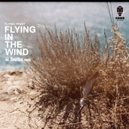 Flying Point - Flying In The Wind (Gvozdini Remix) [ADRO] Preview