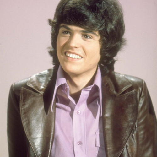 'Puppy Love' Cover by Donny Osmond